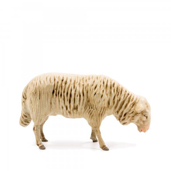 Schaf grasend, zu 21cm Figuren