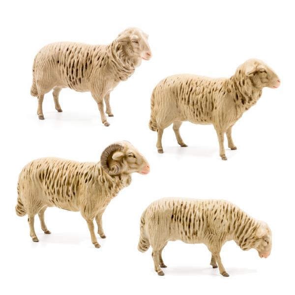 Flock of 4 sheep, to 8.5 in. figures