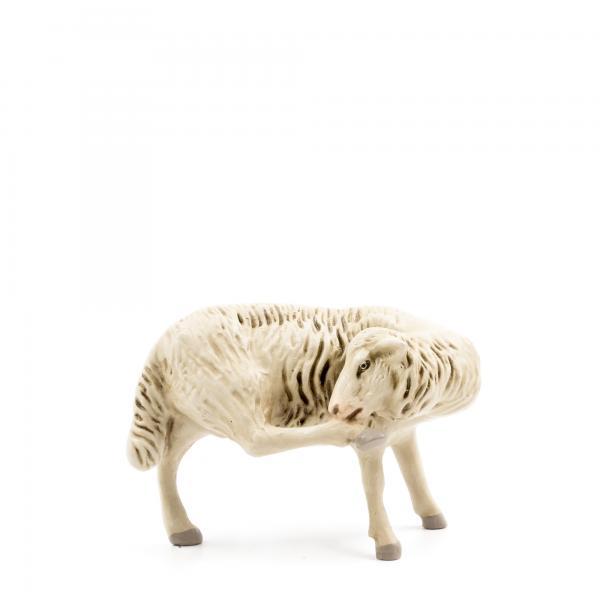 Schaf Bein leckend, zu 21cm Figuren
