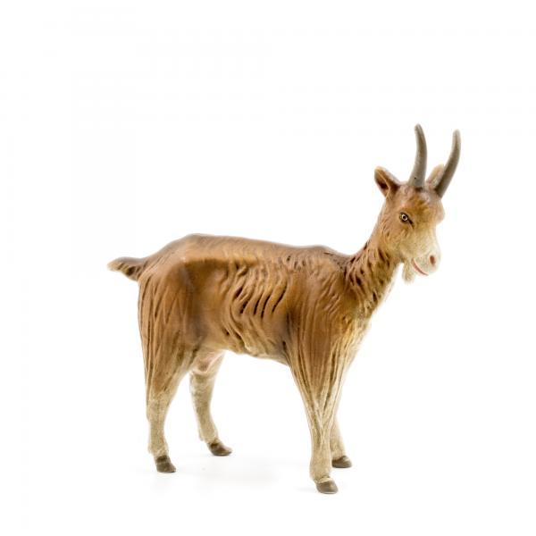 Ziege stehend, zu 21cm Figuren