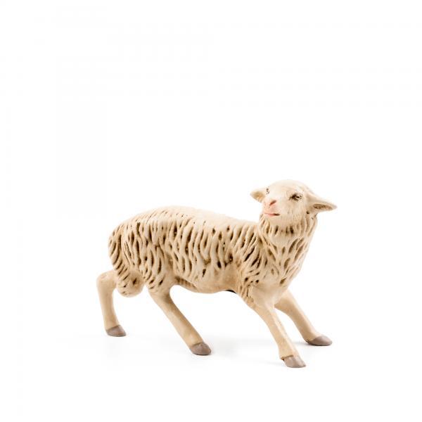 Schaf erschrocken, zu 17cm Figuren passend