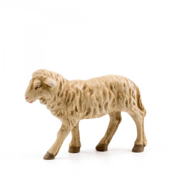 Schaf geradeaus blickend, zu 9 - 10cm Krippenfiguren - Original MAROLIN® - Krippenfigur für Ihre Weihnachtskrippe - Made in Germany