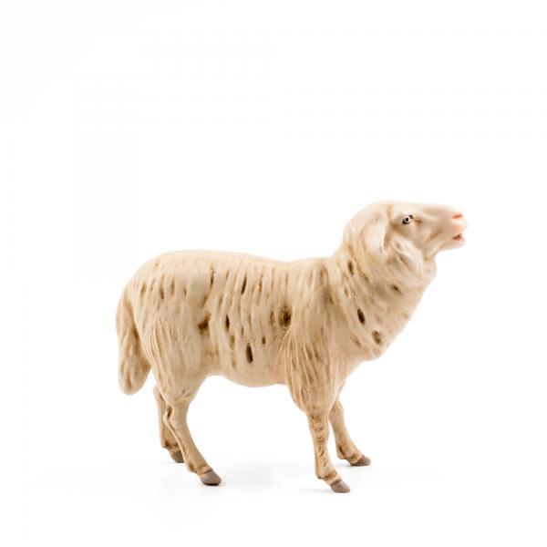 Schaf blökend, zu 17cm Figuren