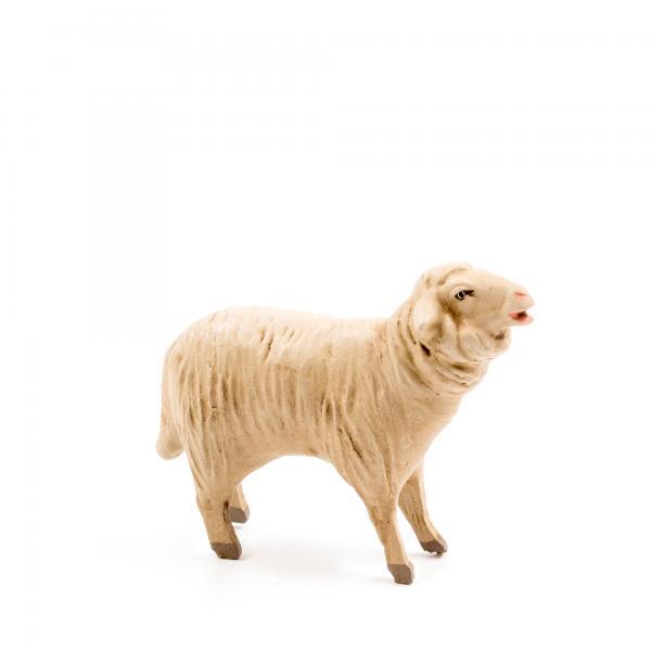 Schaf blökend, zu 14cm Figuren passend